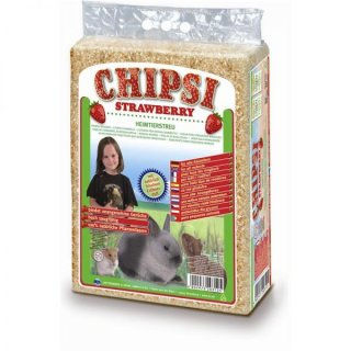 Chipsi Strawberry Hobelspäne 60l